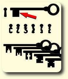 Schlüsselbart